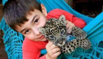 Бразильский мальчик, который спокойно живет с ягуарами