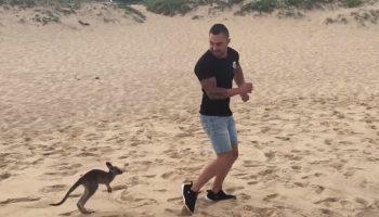 Молодой человек нашел друга в лице маленького кенгуренка