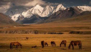 Шикарно! Нетронутая красота Киргизии в фотографиях Альберта Дроса