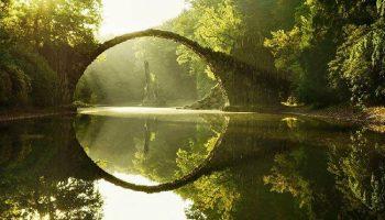 Природа — лучший архитектор! Мосты, в которых застыли природа и время