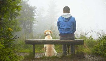 «Витька и его Тень» – душевный и теплый рассказ о незабываемой дружбе