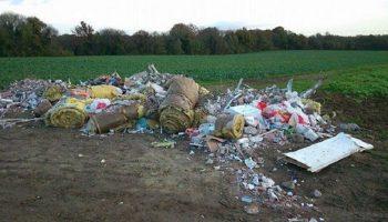 Проучил так проучил: Мэр наказал людей, которые оставили мусор в лесу. Очень показательно!