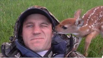 Маленький и милый олененок не хочет уходить от своего спасителя ни на минуту
