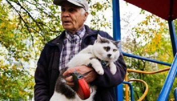 За этого котика пенсионеру предложили 500 000 рублей и автомобиль