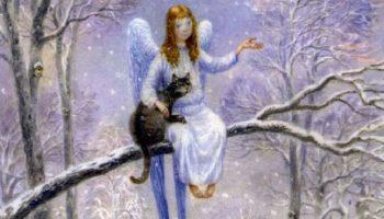 Самая добрая сказка в мире «Кот и Ангел»