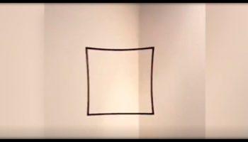 «Квадрат или круг»: оптическая иллюзия, которая ошарашила весь Твиттер
