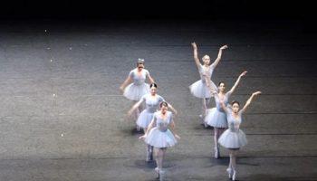 Никогда не думал, что буду смеяться во время балета