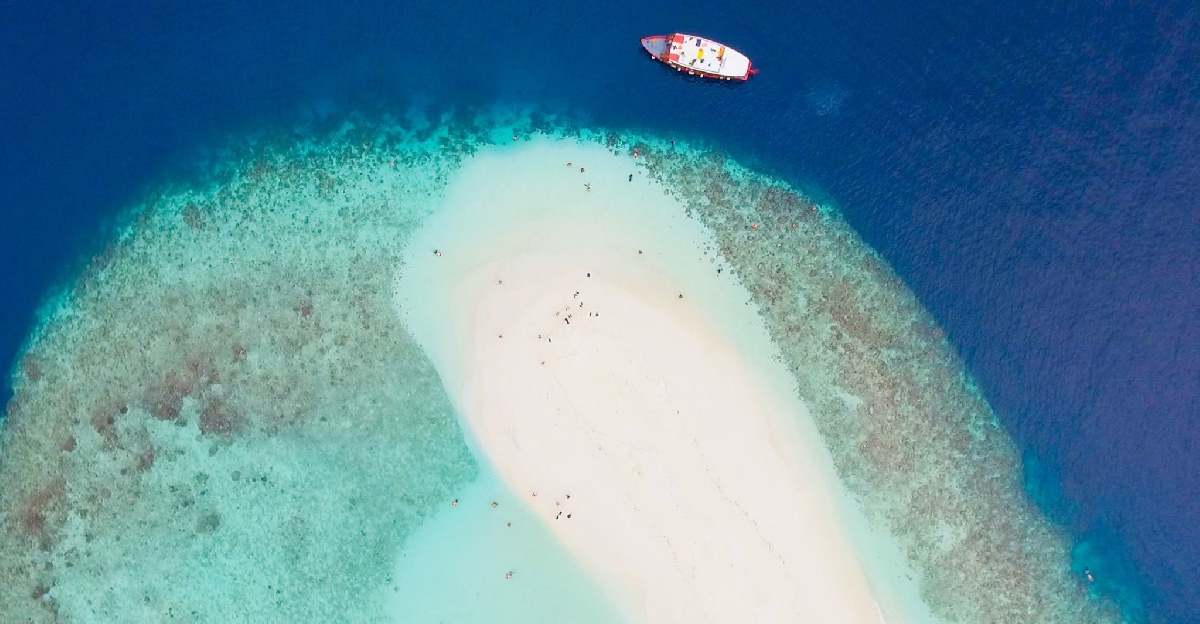 Он взял всю фирму и отправил ее на Мальдивы! Корпоратив стоил USD500 тыс...