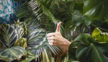6 забавных уроков жизни с глубокой моралью
