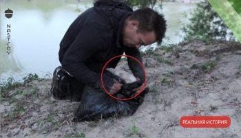 Мужчина нашел мусорный пакет на берегу реки. То, что оказалось внутри, навсегда изменило его жизнь!