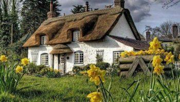 40 снимков сказочного графства Девоншир, которые приводят в восторг