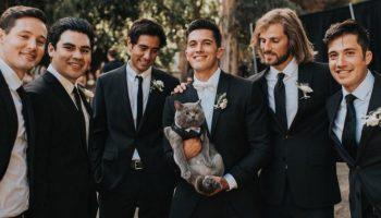Парень пригласил в качестве свидетеля на свою свадьбу кота и тот стал героем вечера!
