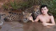 Бразильский мальчик Тьяго Силвейра живет с ягуарами!