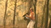 Женщина сняла свою рубашку, чтобы спасти коалу из лесного пожара