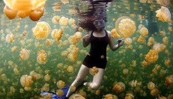 Шедевральные снимки National Geographic, которые взорвали интернет