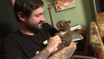 Парень приютил дефектного котенка и стал знаменитостью