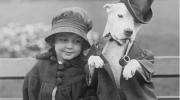 Смешные фотографии с животными, снятые больше 100 лет назад