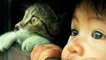 Позитивная подборка фото детей + животных.