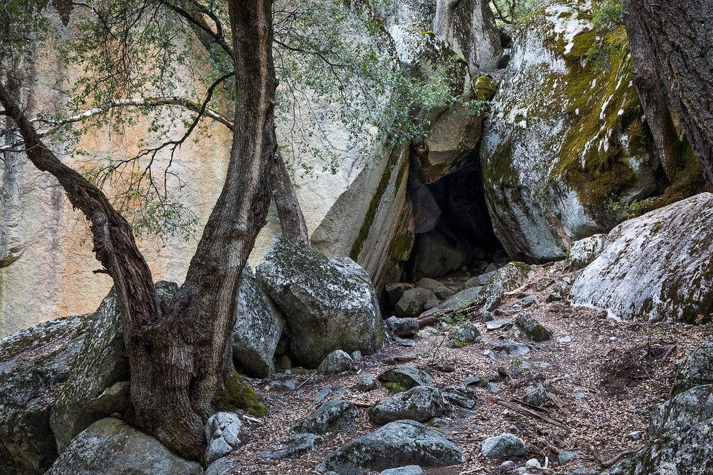 Пещер в тех краях множество. Одну из них и приметила семья Роберта.