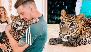 Александр из Екатеринбурга выкупил больного леопарда и теперь он живет с ним в его квартире