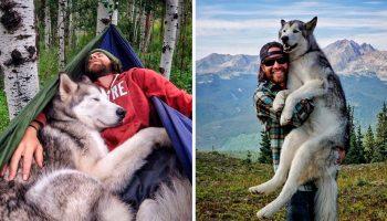 Келли всегда путешествует со своим псом Локи, потому что ненавидит, когда собак держат взаперти