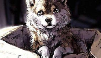 Сильный стих: Мне не жалко людей, я жалею собак, Голодающих на вокзалах