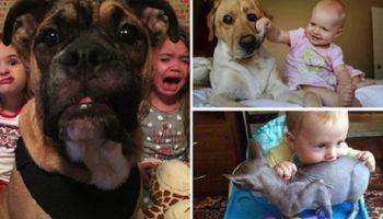 Животные, которые живут с детьми, точно попадают в рай без очереди