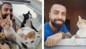 Этот парень спас девять кошек, и теперь по ночам они приходят его благодарить!