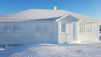 12 забавных снимков о том, как снег развеселил канадцев