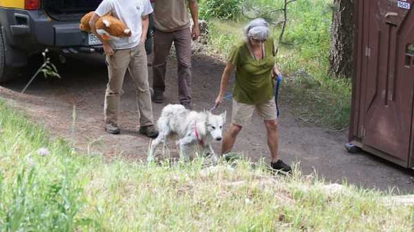 фото Facebook / WOLF Sanctuary