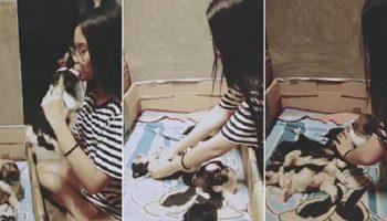 Девушка придумала новый метод уложить спать щенка: нужно не менее пяти поцелуев