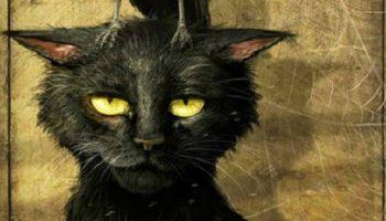 «Ворона и кот» – сказка для взрослых от которой становится на душе тепло