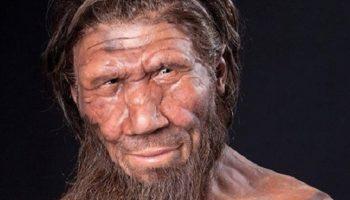 20 необычных фактов, которые перевернут ваши взгляды на историю человечества