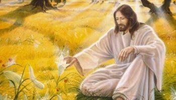 Утренняя молитва на очищение от всего плохого грядущего дня