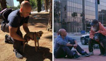 Ветеринар лечит собак, которые живут с бездомными. Он бесплатно помогает им
