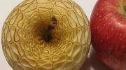 Головокружительные узоры на фруктах и овощах с помощью техники мукимоно японского мастера Гаку
