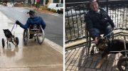 Люди предавали этого пса четыре раза и все потому что он инвалид. Но он не терял надежду и ждал своего хозяина…