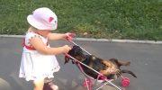 Внучка приехала в гости. Кот подался в бега, а вот пес не успел!