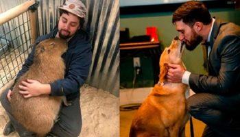 Животные — это любовь и позитив! Эти фото поднимают настроение