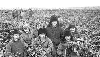 Во времена СССР трудились все и это не было неприлично