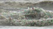 Ужасающая картина: пластиковый прибой на пляжах Дурбана, самого «зелёного» города мира