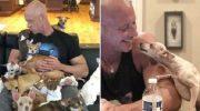 Спортсмен никогда не любил маленьких собак, пока не встретил одну чихуахуа