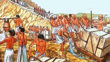 Умное решение: Как отменили глупое рабство и придумали умное