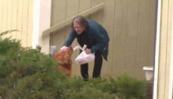 На самоизоляции пожилая женщина использует свою собаку