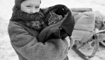 Кот Вася спас семью во время блокады