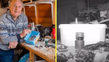 Мужчина установил камеру, чтобы узнать: кто же каждую ночь убирал в его фермерском сарае