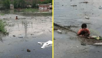 Чтобы спасти маленького бездомного щенка, парень прыгнул в яму с грязной водой и мусором