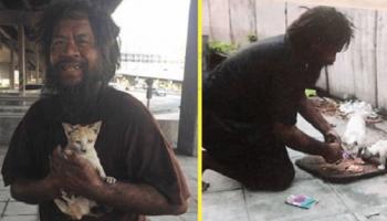 Бездомный мужчина, сам часто голодает, но ежедневно кормит уличных кошек