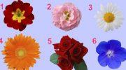 Просто выбери цветок и узнай тайну женственности