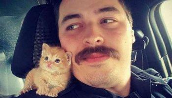 Удивительная история, как рыжий котёнок легко руководит своим папой-полицейским